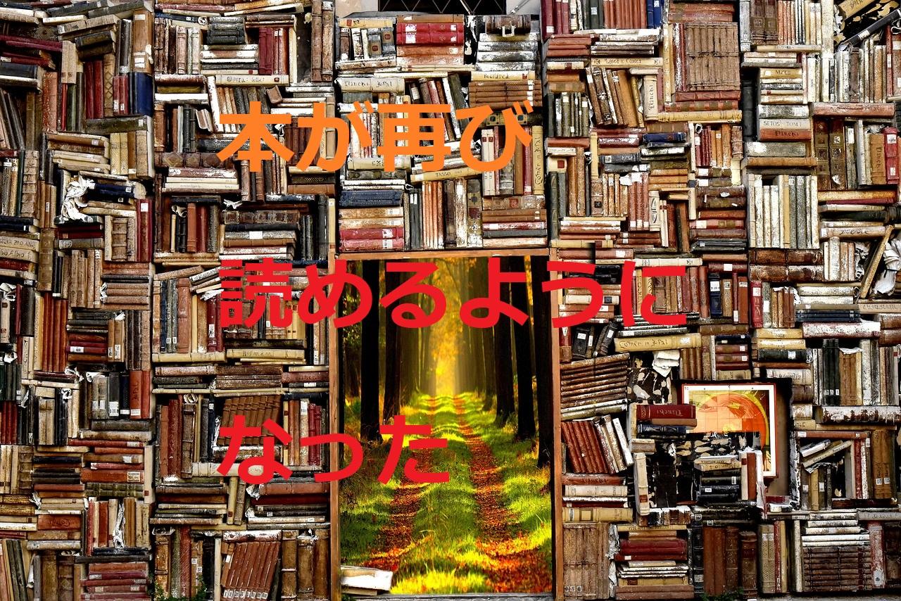 本が読めるようになった。大量の本の写真。