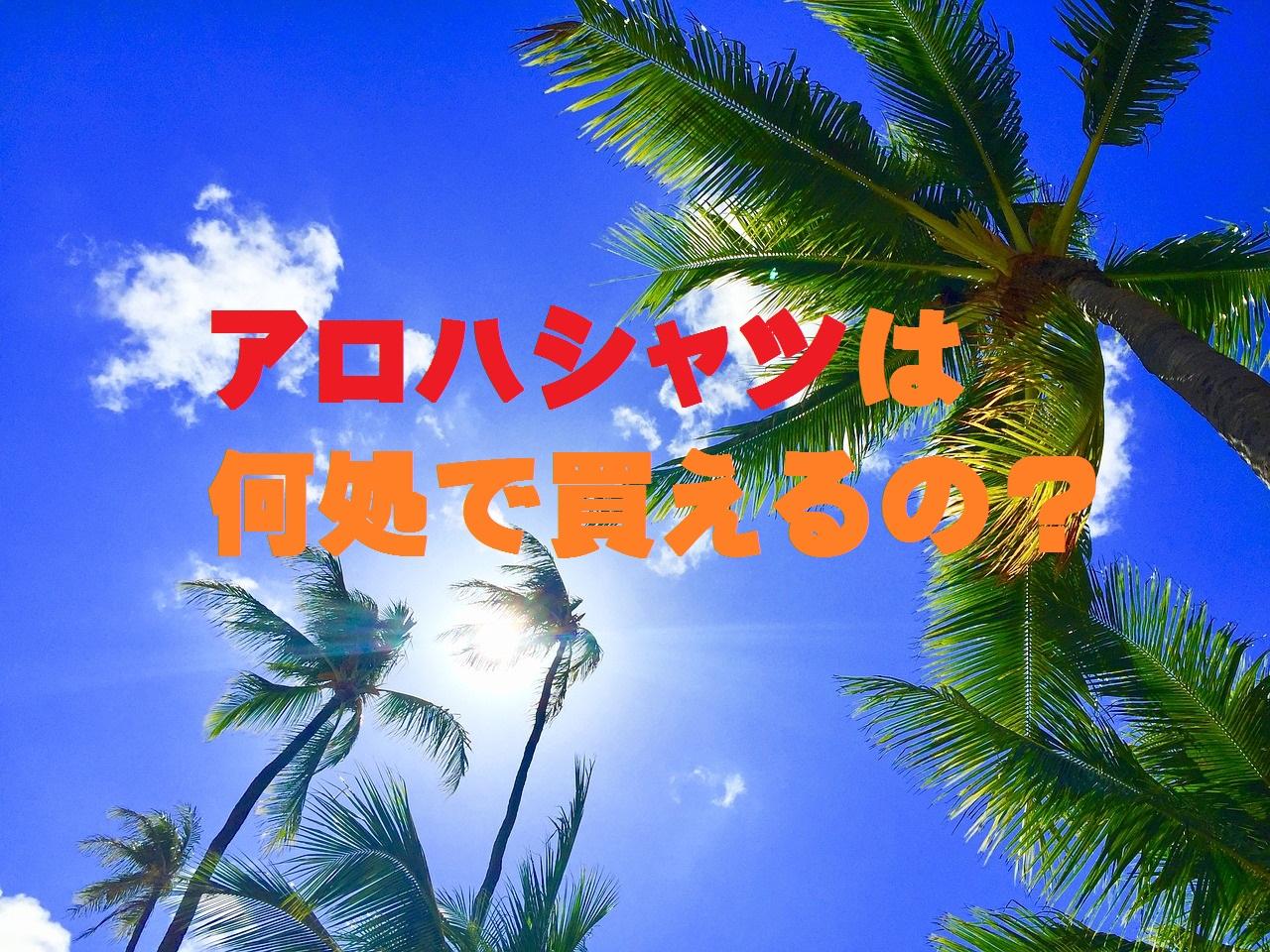 アロハシャツは何処で買えるの?の文字とヤシの木の背景
